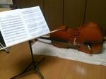 cello1H270320.jpg