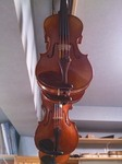 violinH260917.jpg
