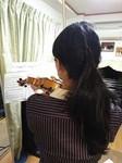 violinH280131.jpg