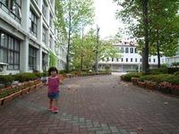 taikusaiH210919.jpg